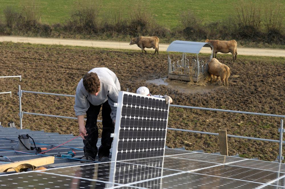 Les bonnes raisons d'installer des panneaux photovoltaïques sur votre bâtiment agricole